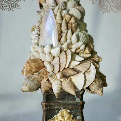 Gorgonia  sobre corales y conchas toscanas sobre peana Florentina s.XVIII