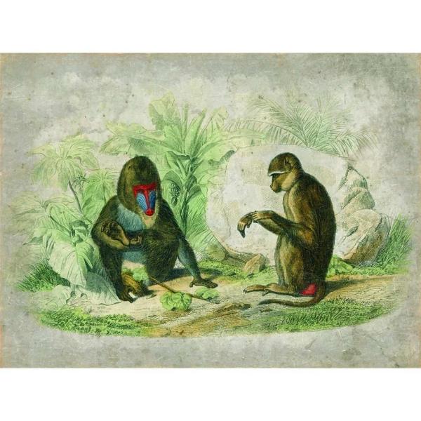 Mural Monos jugando.