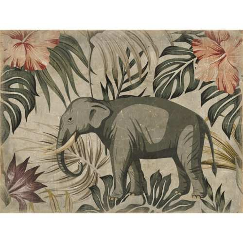 Mural Elefante Color.