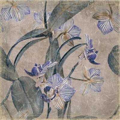 mural orquídeas