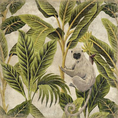 mural ouistiti